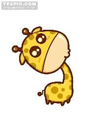 ...长颈鹿...